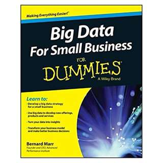 Big Data For Small Business For Dummies BY Bernard Marr
