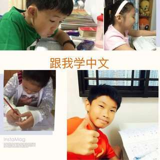 Chinese tutor available