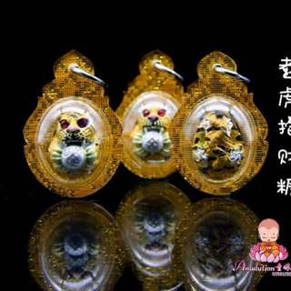 Amulet 老虎抱著財糖tiger holding sugar candy shape by the good faith favorite