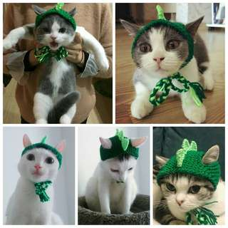 🚚 毛小孩 秋冬款 貓貓 手工 恐龍 哥吉拉 帽子 寵物 裝飾 毛線帽 療癒 搞笑 超酷 貓咪 變裝 毛線 編織帽