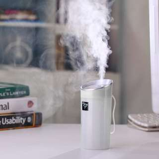 USB Anion Air Humidifier Aromatherapy Aroma Diffuser 300ml Capacity Cup