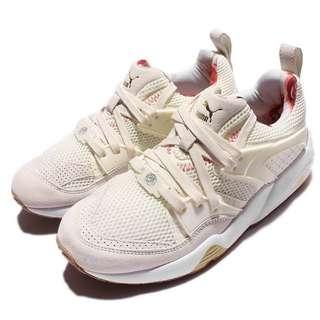 全新女裝鞋 Running lifestyle women shoes