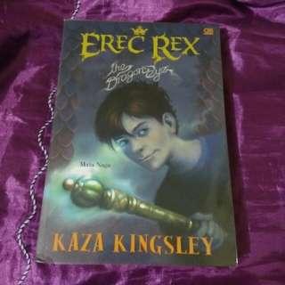 Erec Rex: The Dragon Eye by Kaza Kingsley