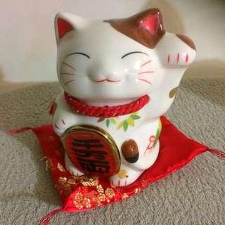 日本購買招財貓錢甖