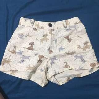 High waist Cat shorts in cream colour