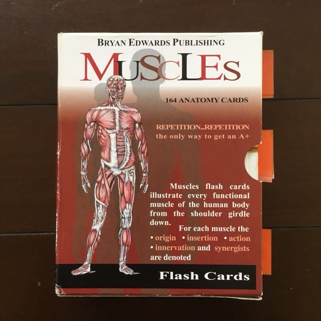 Anatomy Flash Cards By Bryan Edwards Publishing For Stott Pilates
