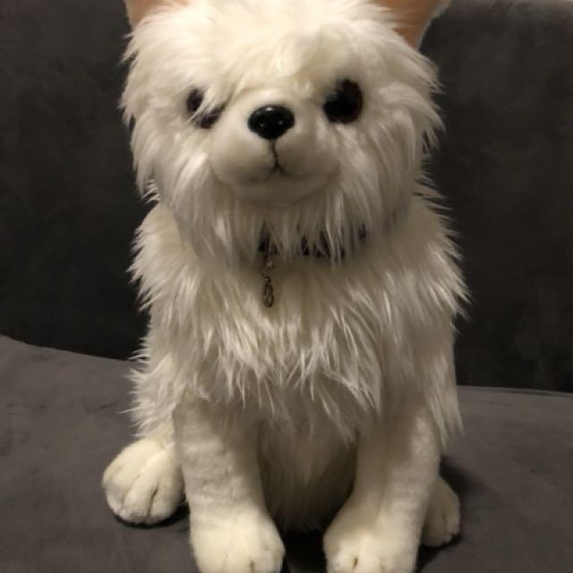 Doggy Dog Doll