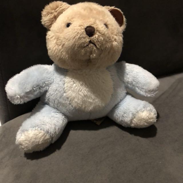 Mini Teddy dr Teddy House
