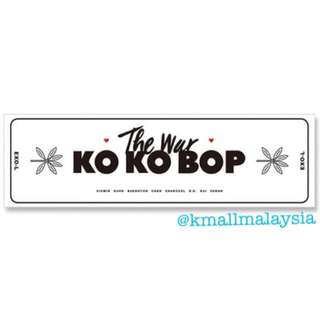 [Ready Stock] Exo Hand Banner