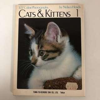 1973 Cats & Kittens 1 - Nobuo Honda