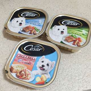 Cesar canned food