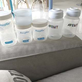 Avent Bottle, The First Years Bottle