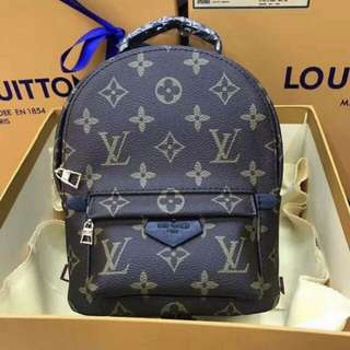 Authentic LV Palm Spring Bag