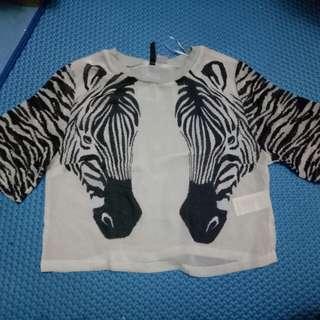 Hnm zebra