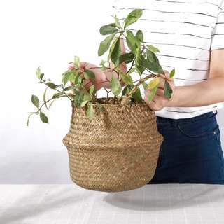 Natural Straw Belly Basket