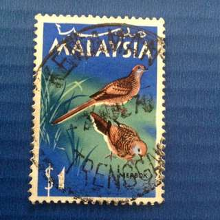 Malaysia 1965 Birds Series Zebra Dove $1 Used SG24 (0234)
