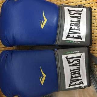 Everlast Boxing Gloves (12oz) RUSH!!