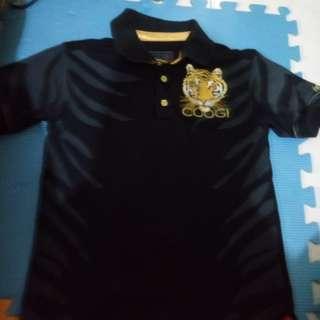 Coogi Polo Shirt Good as new