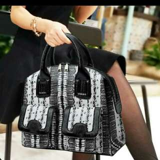 Handbag Korea Style Smart Cool Black Grey Special 韓系 女裝 手袋 包包 高質  潮爆 型人 新款 冬天型格 灰黑袋 141 star elegant