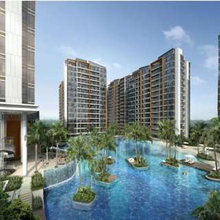 COCO PALMS DEVELOPERS SALE