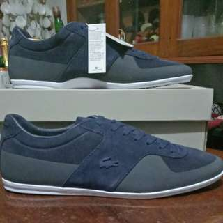 New Navy Blue Lacoste Shoes