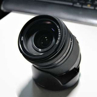 Sony 18-250mm f/3.5-6.3 DT (Super Zoom Lens)