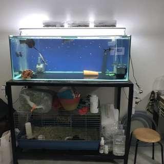 4 x 2 x 1.5 Aquarium tank (OHF + Light)