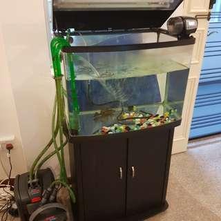 Fish tank & 2 ehiem canister filter
