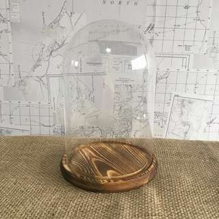RENT: Glass Dome/Bell Jar with Wooden Base