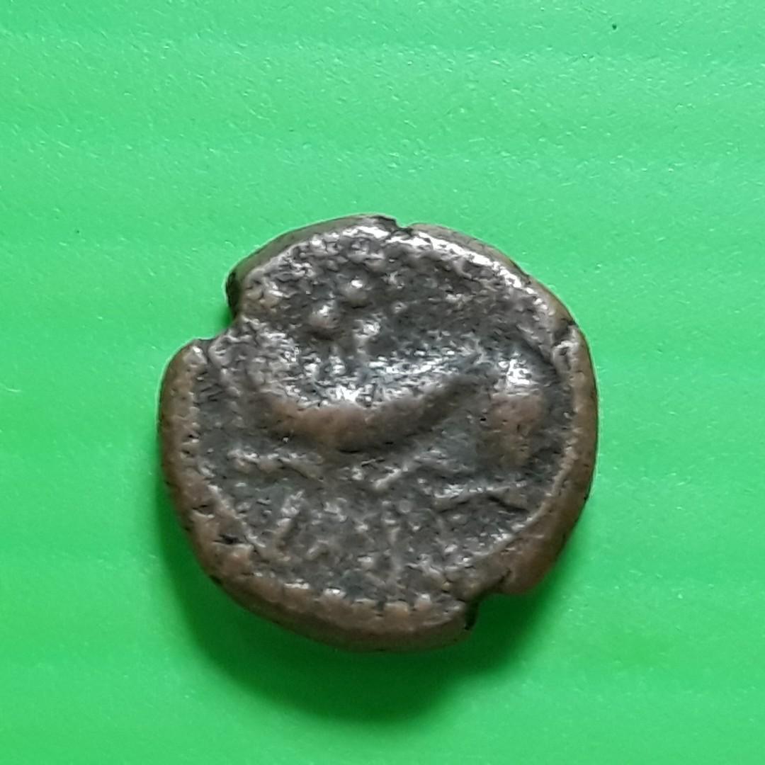 South India Copper Coin - MYSORE WODEYAR Lion X Cash - st052 South India  Copper Madurai Tanjore Arcot Vijayanagar Mysore Shivaganga Beautiful  vintage