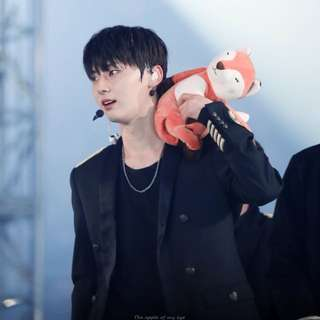 [WTB] minhyun's fox doll from miniso