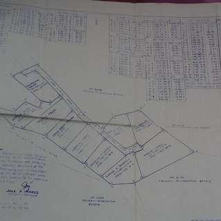 1000 sq meter lot for sale at Tagaytay Minglanilla Cebu