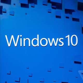 Microsoft Windows 10 CD/Product Key OEM