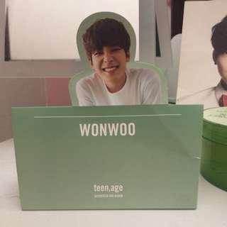 Wonwoo Standee (Teen, Age)