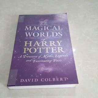 The magical world of harry potter