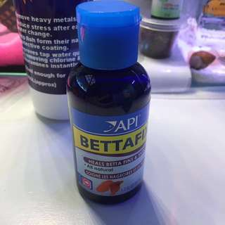 🐟 Betta Fix 🐟