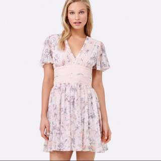 Forever New Floral Dress (latest collection)