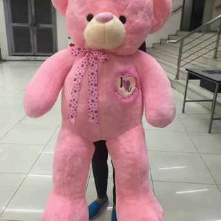 1.5 meter teddy bear  Human size  For valentines  💕❤️❤️💕  Availble now !!!!!