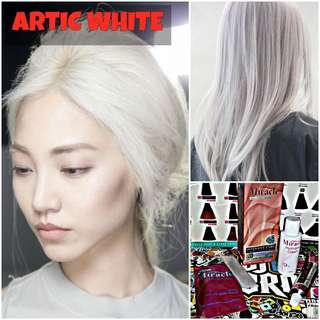 Artic White Hair Dye / Colour (NON DAMAGE)