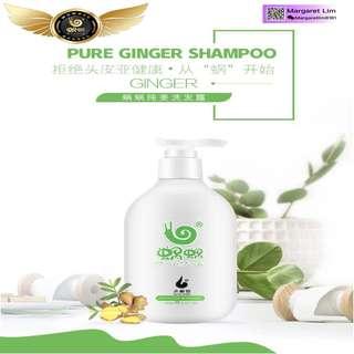 Wowo Pure Ginger Shampoo