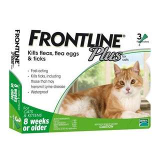 (Free Delivery) Frontline - Anti flea for cats