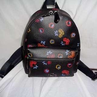 Mini charlie backpack