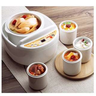 Multi Pockets Electrical Food Cooker