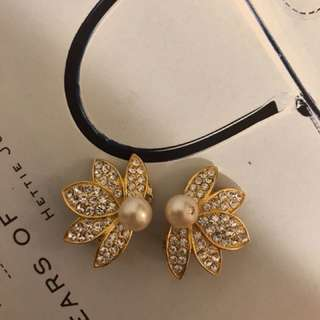 Beautiful Antique earrings (clip type)