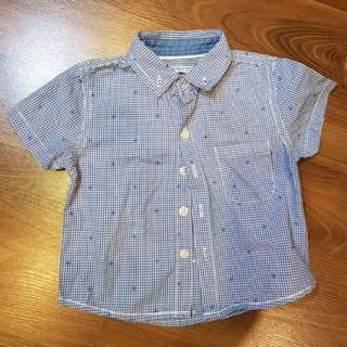 Gingersnaps Short Sleeved Polo (6m)