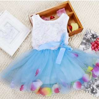 Baby Girl / kids / toddler/ Dress / clothing / skirt