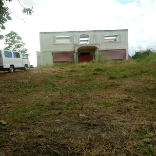 Farm lot for sale(pililla rizal)