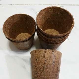 Coco pot