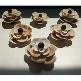 Seashell Art - FLOWER