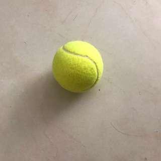 Tennis Ball 網球